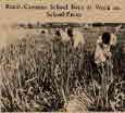 학교 농원에서 작업하는 시골 공립 소학교 소년들
